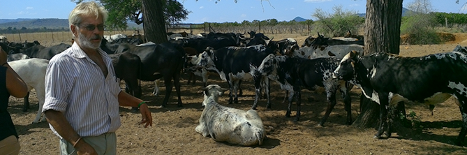Maitjene Nguni Cattle Project